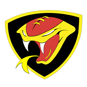 Donegal Derry Vipers – NFL Power Rankings Week 10